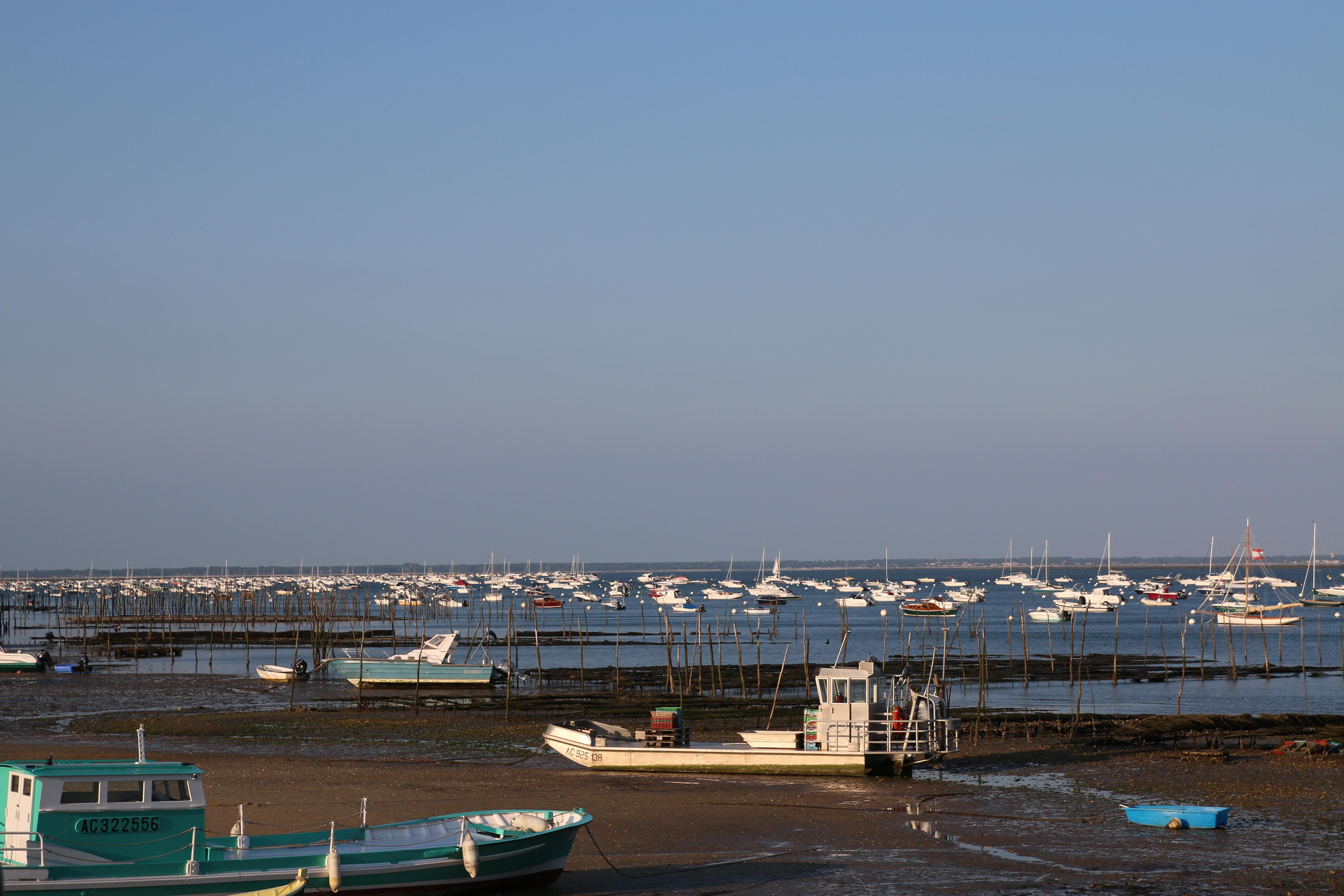 Vue du bassin d'Arcachon et de barges ostréicoles au premier plan