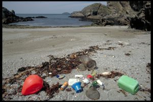 Macrodéchets apportés sur par la marée. Copyright O. Barbaroux/Ifremer