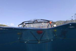 MÈsocosme, sorte de tube ‡ essai flottant, dÈployÈ dans la baie de Villefranche-sur-Mer pour une expÈrience test. Il est formÈ d'un immense sac en plastique de 50 m3 maintenu par une structure de 8 m de haut. Il emprisonne l'ensemble du plancton. La concentration de CO≤ dans ce sac peut Ítre modifiÈe. Une cinquantaine de paramËtres chimiques et biologiques peuvent Ítre mesurÈs et des Èchantillons peuvent Ítre prÈlevÈs. Ce type de mÈsocosme permet d'Ètudier l'effet de l'acidification des ocÈans sur la communautÈ pÈlagique, dans le cadre du projet MedSeA (Mediterranean sea acidification in a changing climate). L'objectif est de dÈfinir si l'acidification de l'eau de mer aura des effets sur le fonctionnement et la structure des communautÈs planctoniques cÙtiËres. Caption : Preliminary deployment of mesocosms to investigate the effect of ocean acidification on the pelagic community as part of the MedSeA project. UMR7093 Laboratoire d'ocÈanographie de Villefranche ,UMS829 Observatoire ocÈanologique de Villefranche-sur-Mer 20130001_2023